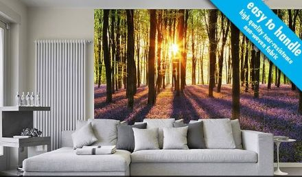 Woodland at dawn Forest non woven wallpaper